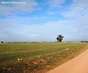 Terrain industriel de 22 Ha à vendre à Bouskoura-Ouled Saleh