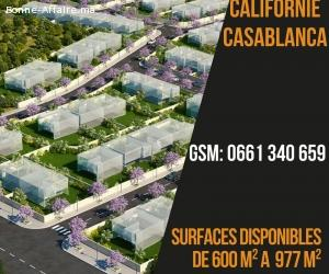 10 lots de villas à vendre:Californie:Casablanca