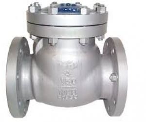 CHECK VALVES IN KOLKATA