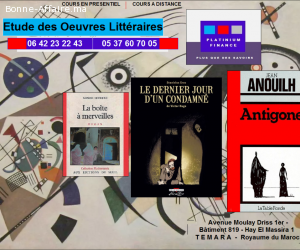 Cours Particulier - Etude des romans - 1ère  année Bac