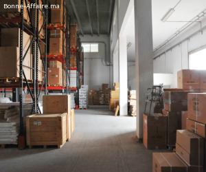 Entrepots de1000 à 6.500 m² au Parc Sapino