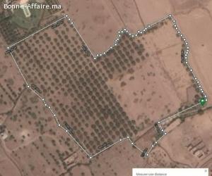 ferme 6ha en location à marrakech