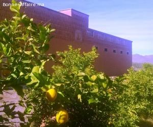 Ferme Titrée à 20 minutes de Marrakech