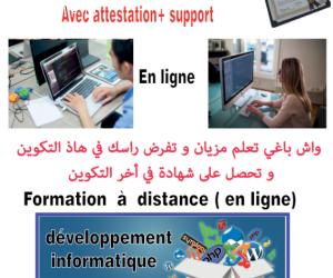 Formations en Informatique en ligne