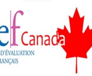 Préparation du TEF (Canada ou Québec)