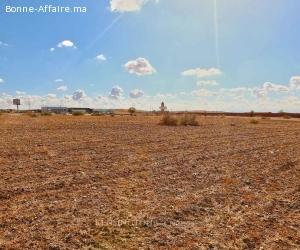 Terrain 1ha en vente sur la route de lourika