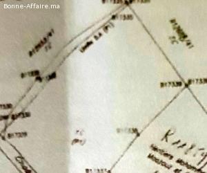 Terrain agricole titré à Bir Tam Tam- province Sefrou