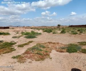terrain de 74Ha en location à la route de fez