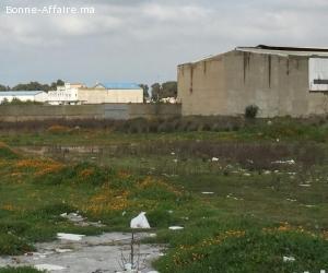 Terrain Industriel 11.500 m² — Bouskoura, Grand Casablanca