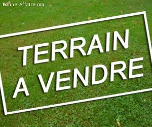 terrain R+4