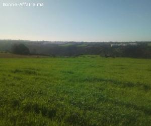 Vendre d'un terrain sur à Elmanzeh, Rabat