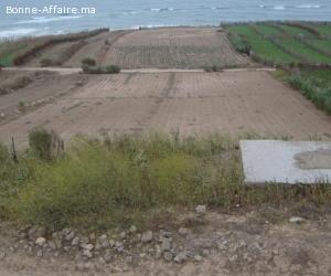 vente des terrains titré au bord de mer vue sur mer